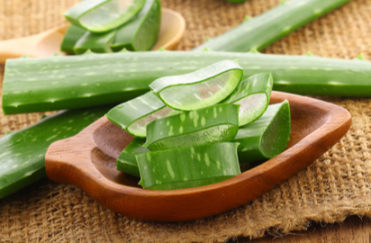 Aloe vera for hair conditioning